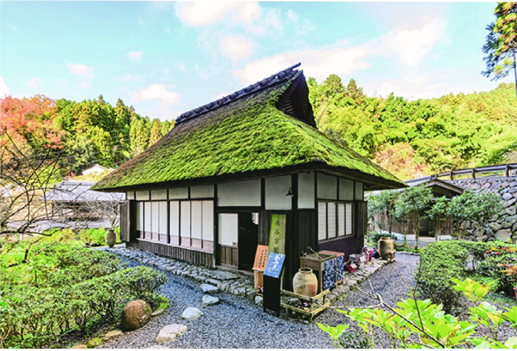 Enjoy the scenic tea plantations and  unique tea culture of the birthplace  of Japanese green tea. – Designated a Japan Heritage site-